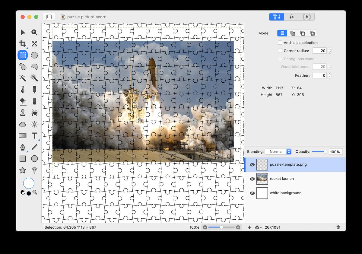 Acorn: Make a Puzzle